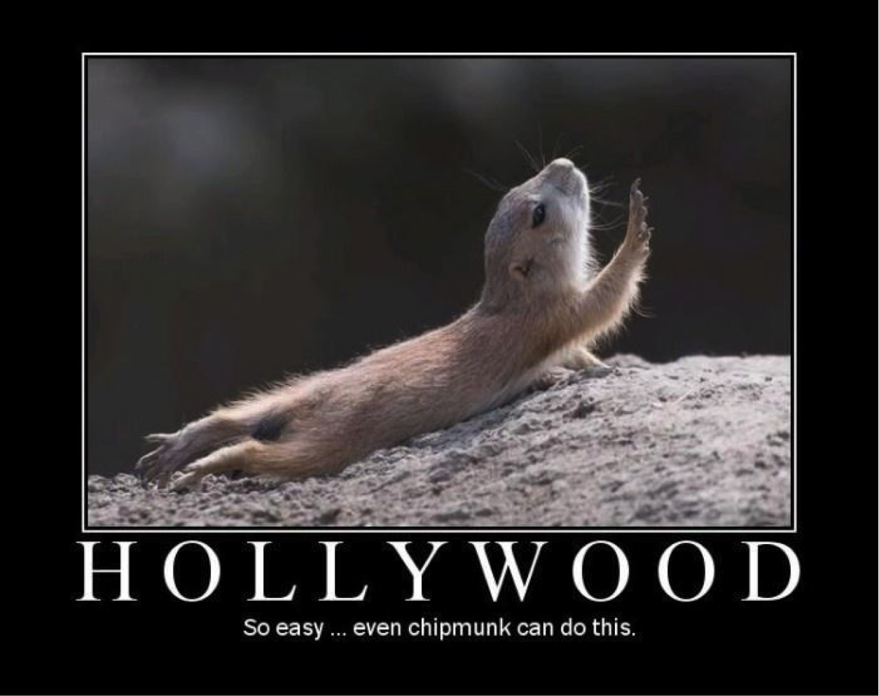The Best Collection of Funny Hollywood Memes - Young Entertainment
